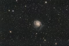 M101_final