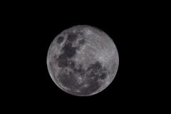 Moon-03941